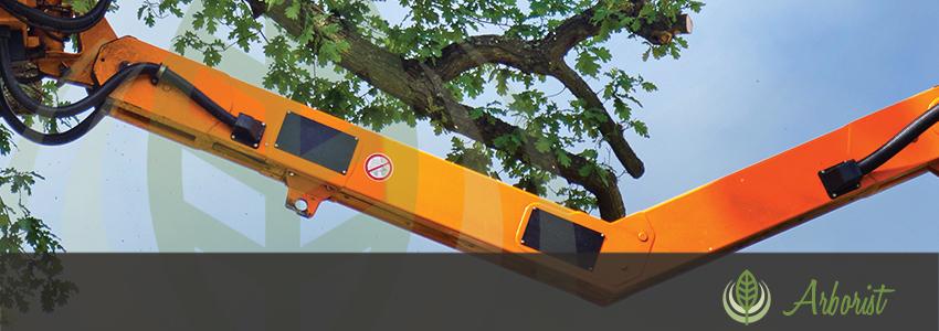Tree_Removal_Arborist_Sacramento_04